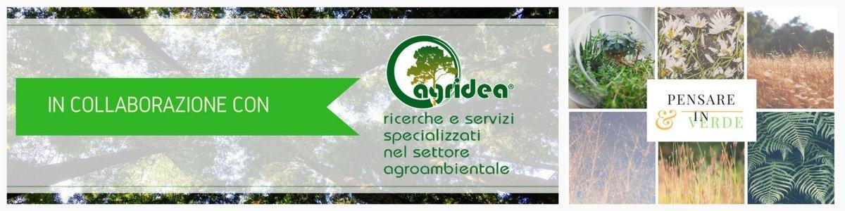 Banner collaborazione di Pensare in Verde con Agridea