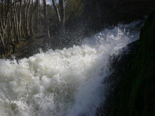 De waterval van Coo