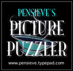 Pensieves_picture_puzzler