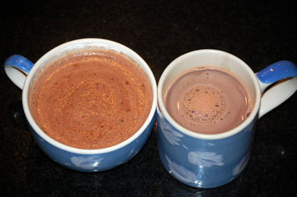 Plainhotchocolateinmugs