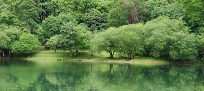 新緑の丸沼ウォーキングツァー六月最終末開催、参加者募集中