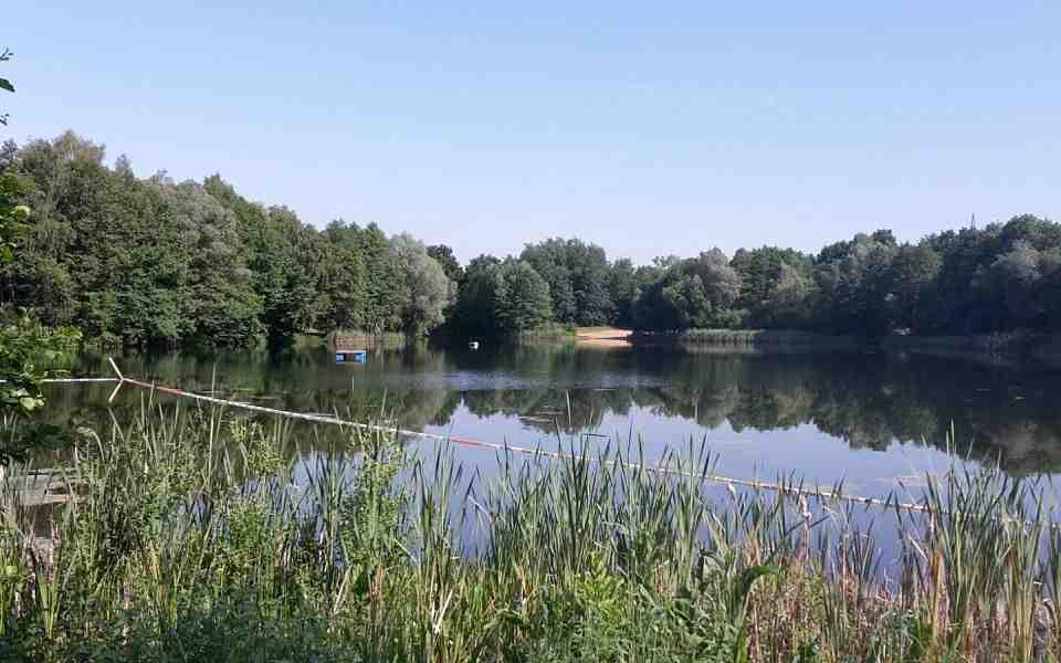 Umgebung von Pension Haus Gisela in Schildow