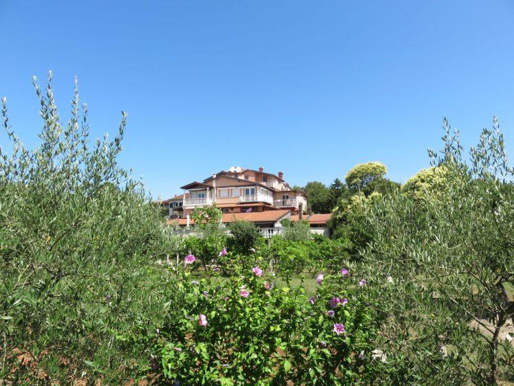 Pension Biba Poreč- Garden