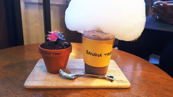 Cotton candy latte and banana pudding flower pot