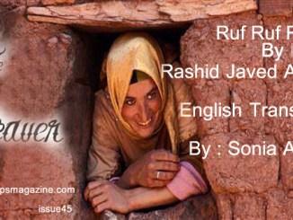 weaver-translation-sonia-ahmed