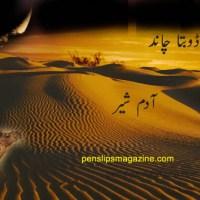 صحرا اور ڈوبتا چاند ۔۔۔ آدم شیر