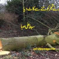 غزل ۔۔۔ سبط علی صبا