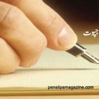 اے میرے دیوانے قلم ۔۔۔ مائرہ انوار راجپوت