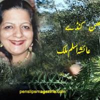 چبھن کنڈے ۔۔۔ عائشہ اسلم ملک
