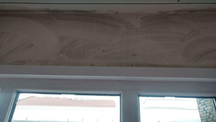 Duvarda terlemenin görüntüsü ve küf mantar oluşumu