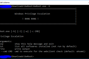 BeRoot For Windows - Privilege Escalation Project