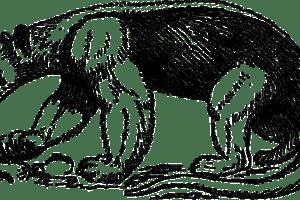 Anteater - CI/CD Gate Check Framework