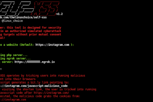 Self-XSS  - Self-XSS Attack Using Bit.Ly To Grab Cookies Tricking Users Into Running Malicious Code