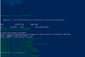 Wynis - Audit Windows Security With Best Practice