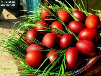 oua-rosii-iarba-verde-de-acasa_w