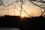 上総亀山 sunrise 1
