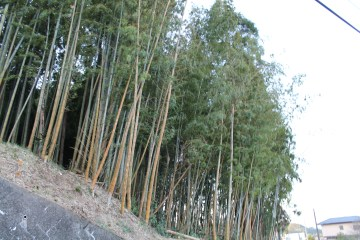 上総亀山 surroundings 15