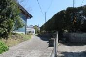 富浦 Streets 6