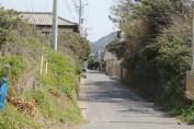 岩井 Streets 2