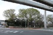千葉 Streets 4