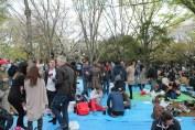 渋谷代々木公園 32