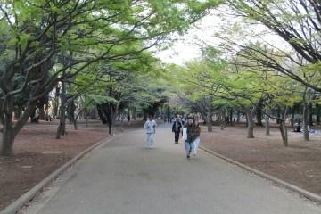 渋谷代々木公園 41