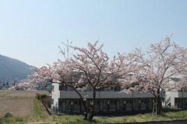長野県 松本 19