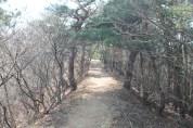 長野県 松本 34