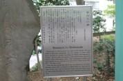 東京上野公園 4