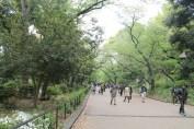 東京上野公園 7