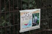 東京上野動物園 48