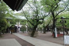 東京靖国神社 9