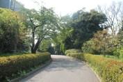 皇居東御苑 13