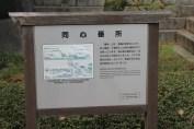 皇居東御苑 47