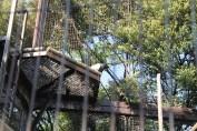 東京上野動物園 108