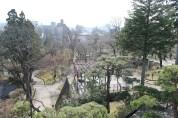 岩手公園 11