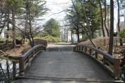 岩手公園 58