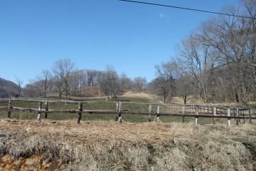 Horse farm Utopia