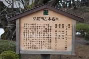 秋田城公園 27