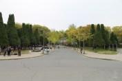 大阪城公園 3