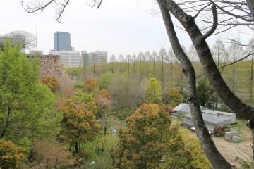大阪城公園 12
