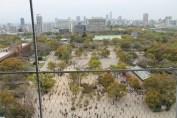 大阪城 8