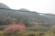 岐阜県 Train ride 1.7