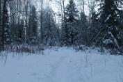 Raahe Winter 80