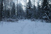 Raahe Winter 80