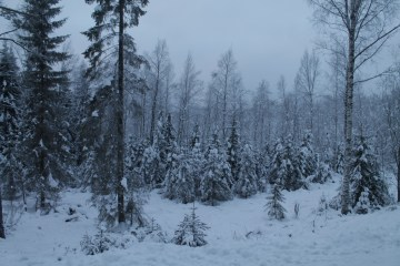 Raahe Winter 9