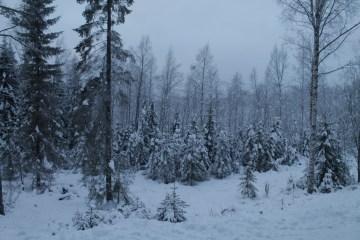 Raahe Winter 9