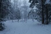 Raahe Winter 30