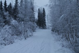 Raahe Winter 39