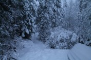 Raahe Winter 56